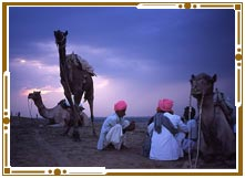 Nightlife in Jaisalmer